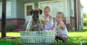 Love + House = Home